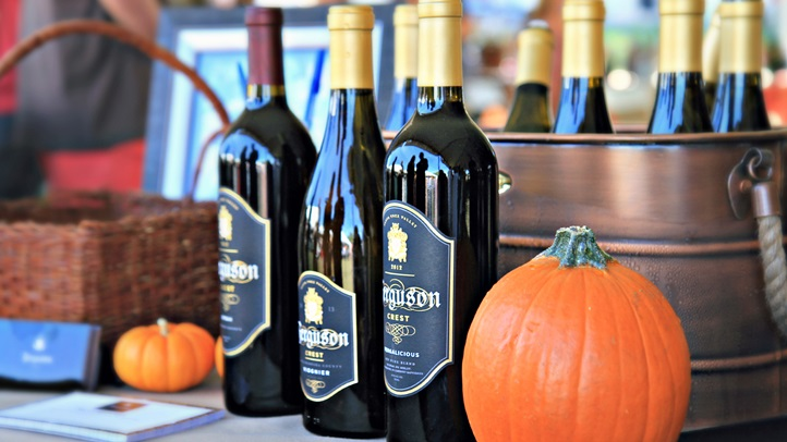 022-IMG_7845_Tenley Fohl Photography_Celebration of Harvest_Santa Barbara County Wine_TFP.