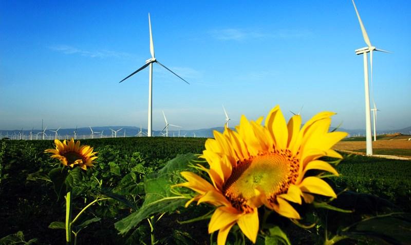 062309 TOP NEWS Spain Wind