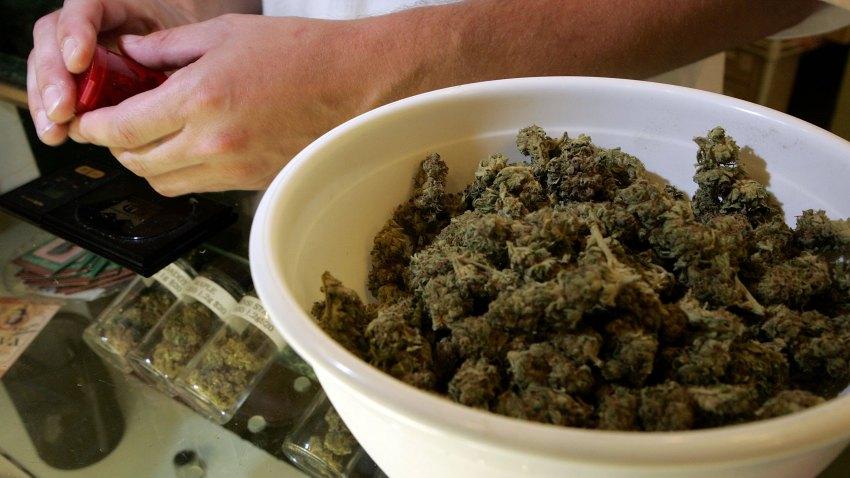 100908 marijuana