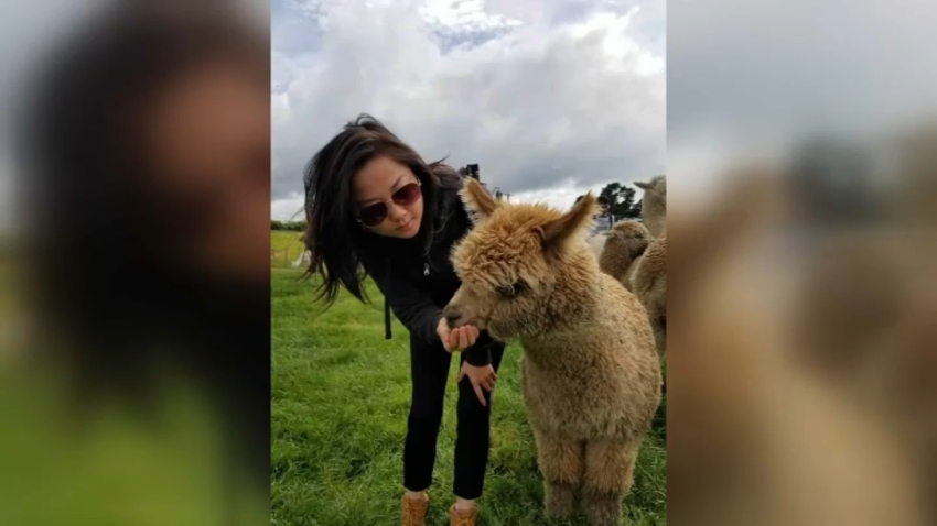 San Francisco Woman Missing After New Zealand Volcano Eruption