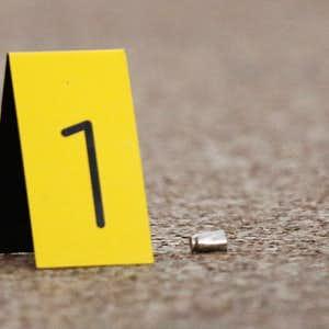 1500183716-Bullets-evidence-marker-(Tom-Fox-DMN).JPG?crop=faces,top&fit=crop&q=35&auto=enhance&w=300&h=300&fm=jpg