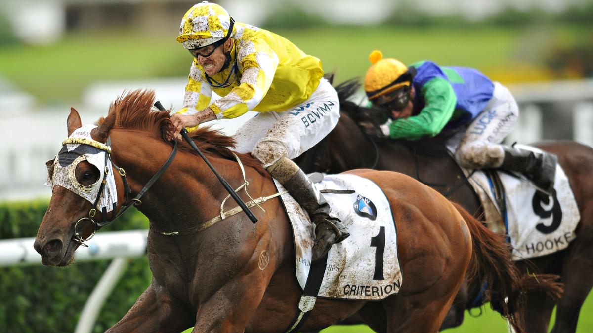 Horse Racing Terms
