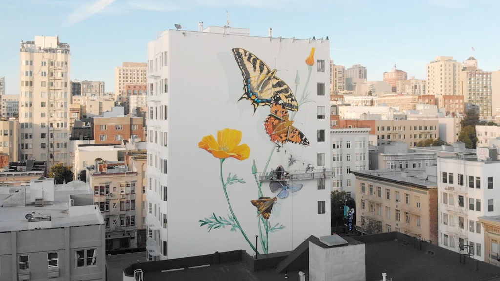 the side of a building displays several butterflies of different colors, painted in a giant mural