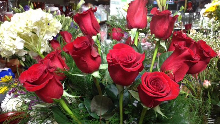Flower Wonderland Branford Valentine's Day 722