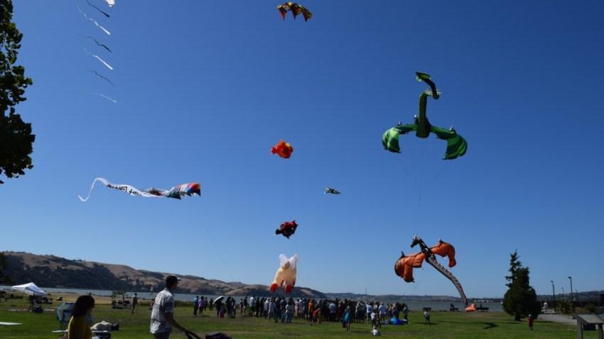 Kite-Wedding (1)