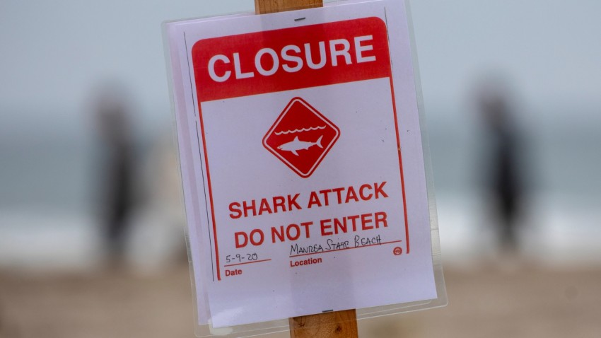 A shark attack sign is posted at the Sand Dollar Beach section of Manresa State Beach in Watsonville.