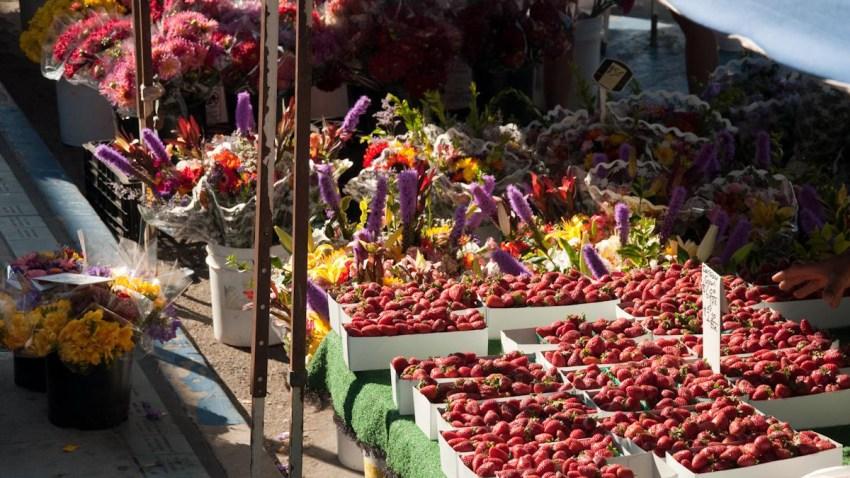 OB-Farmers-Market-Troy-Orem