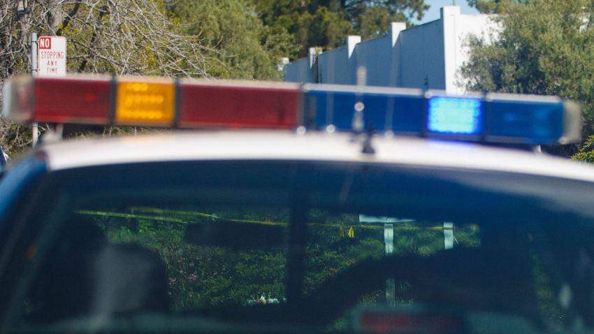 PoliceLights36
