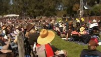SF's Hardly Strictly Bluegrass Festival to be Virtual for Second Straight Year