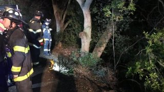 Crews work to rescue a person after they crashed into a creek in San Jose.
