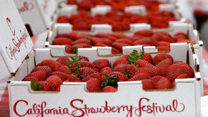 californiastrawberryfestivalboxes2