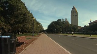 Wide view of the Stanford tower.