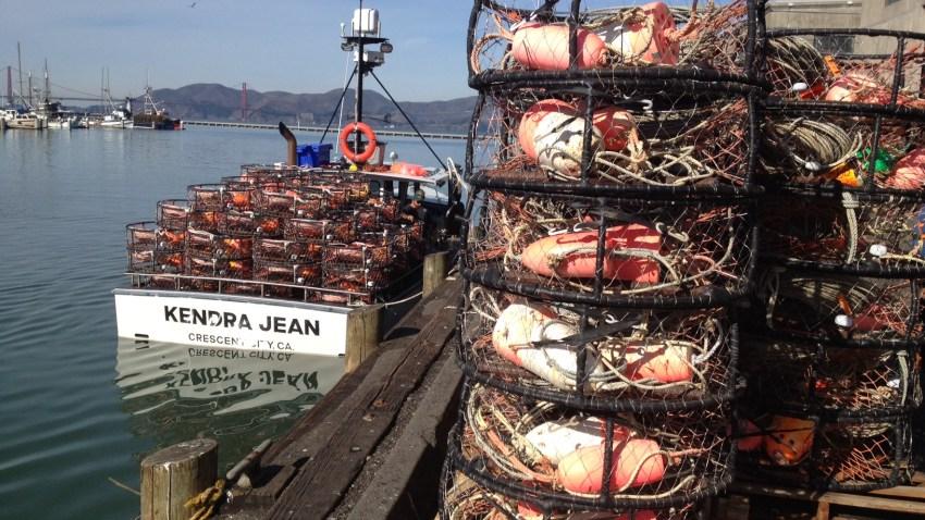 crab18