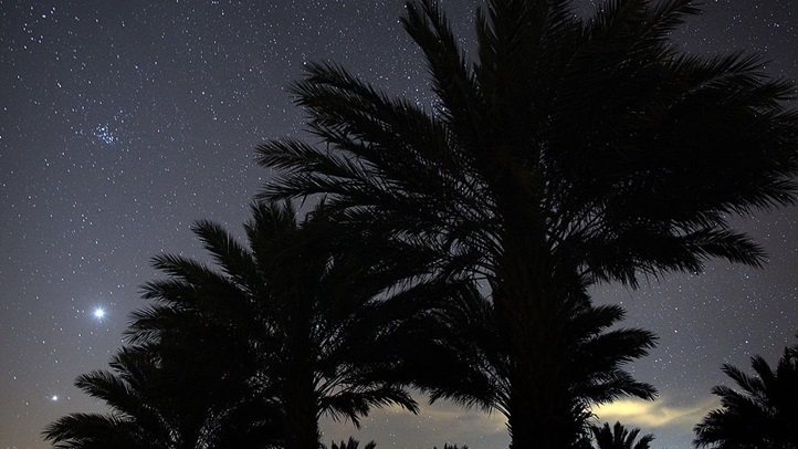 File photo of palm trees in Riverside County