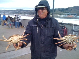 dungeness_crab_04