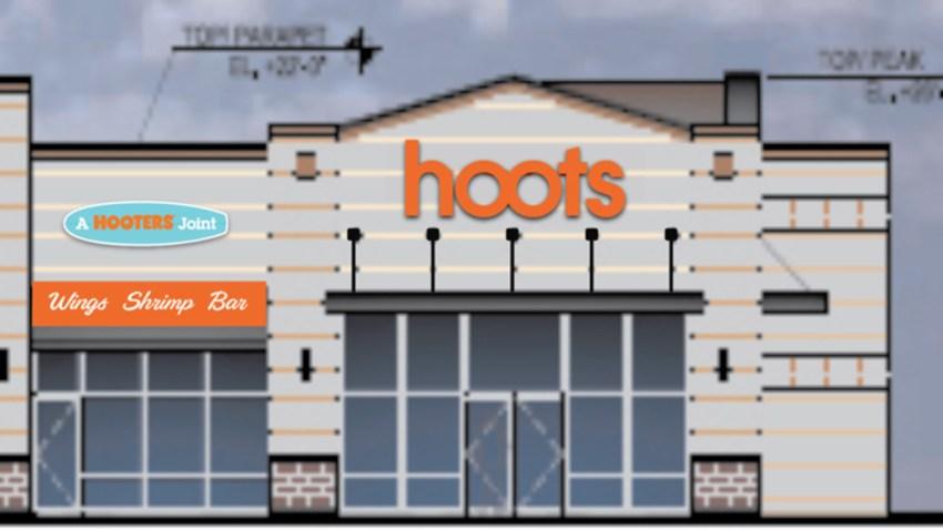 hoots-rendering-edited