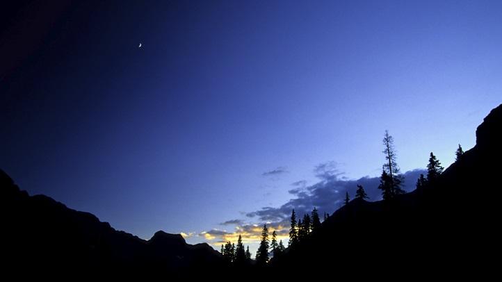 nightskysequoia