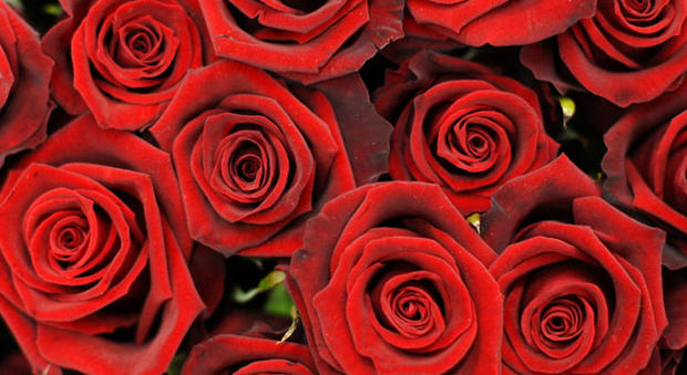 rosebouquetred2