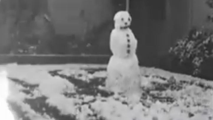 Sunnyvale Snowstorm