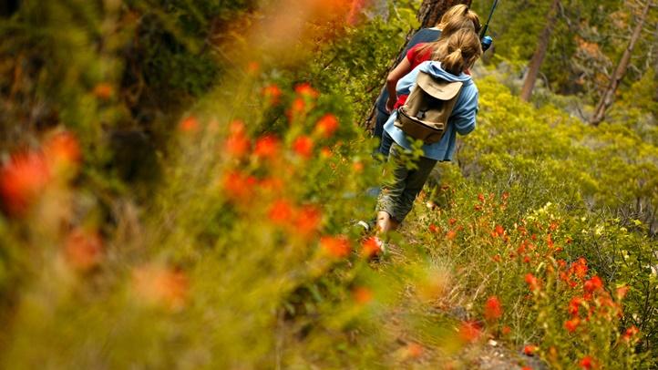squawcreek_hiking_kids_wildflowers
