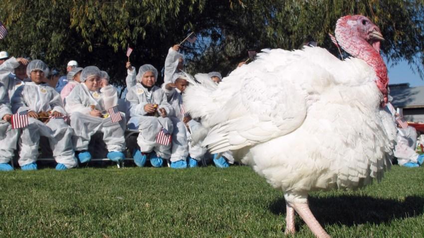 turkeypresident_1200x675