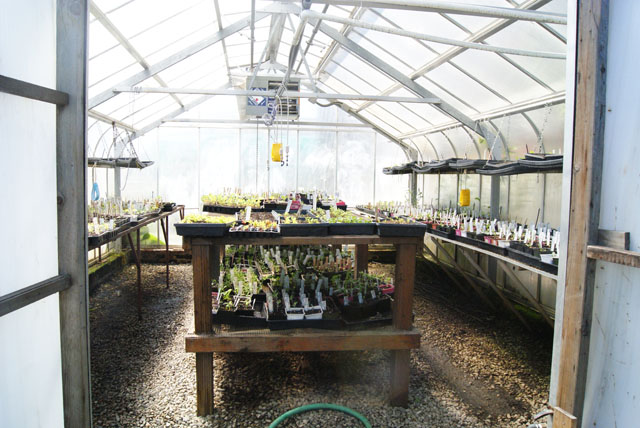 urban farming-25