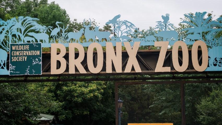 Bronx Zoo entrance