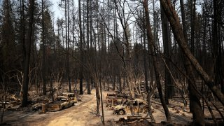 Cars destroyed by the Bear Fire