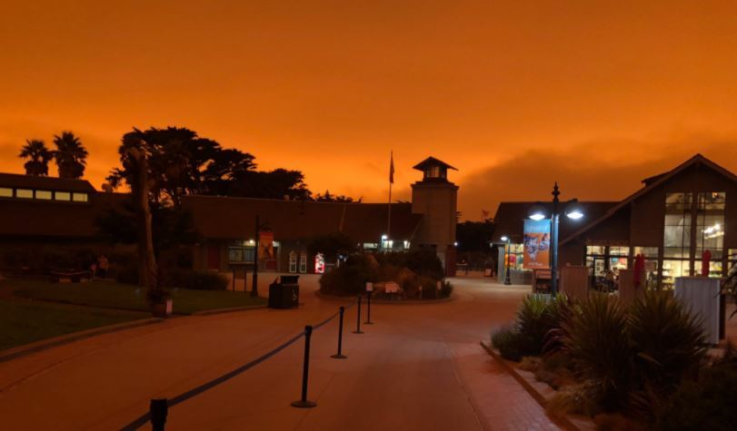 Sf Zoo Christmas Lights 2020 Animals Just as Confused by the Bay Area's Orange Skies – NBC Bay Area