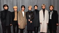 BTS on 1st Grammy Nod: 'It's Hard to Express in Words'
