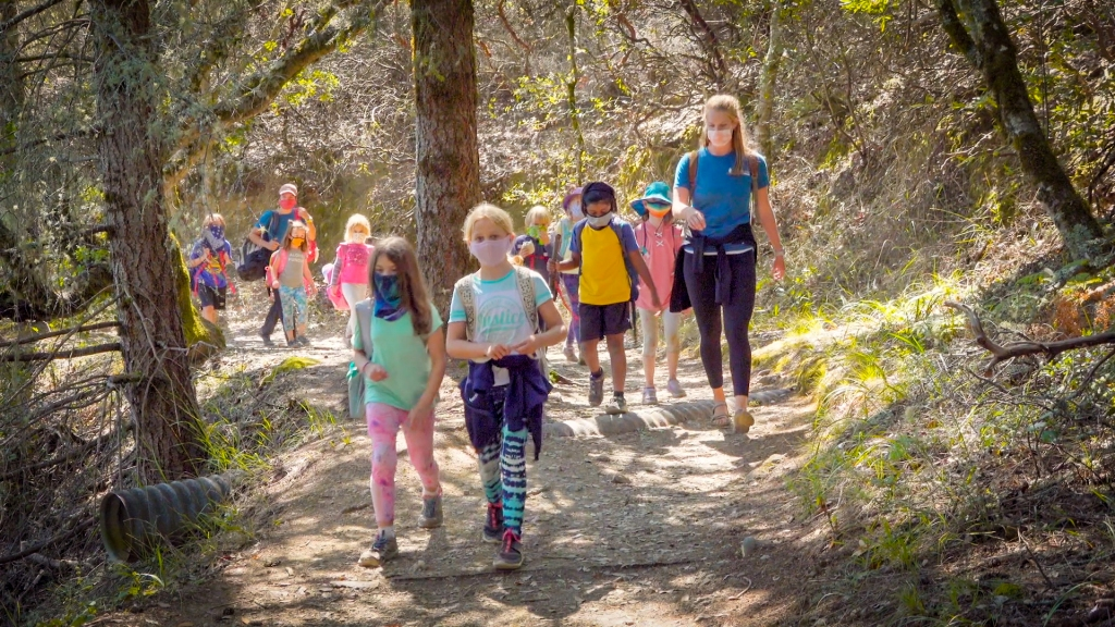 kids on a group walk through the woods