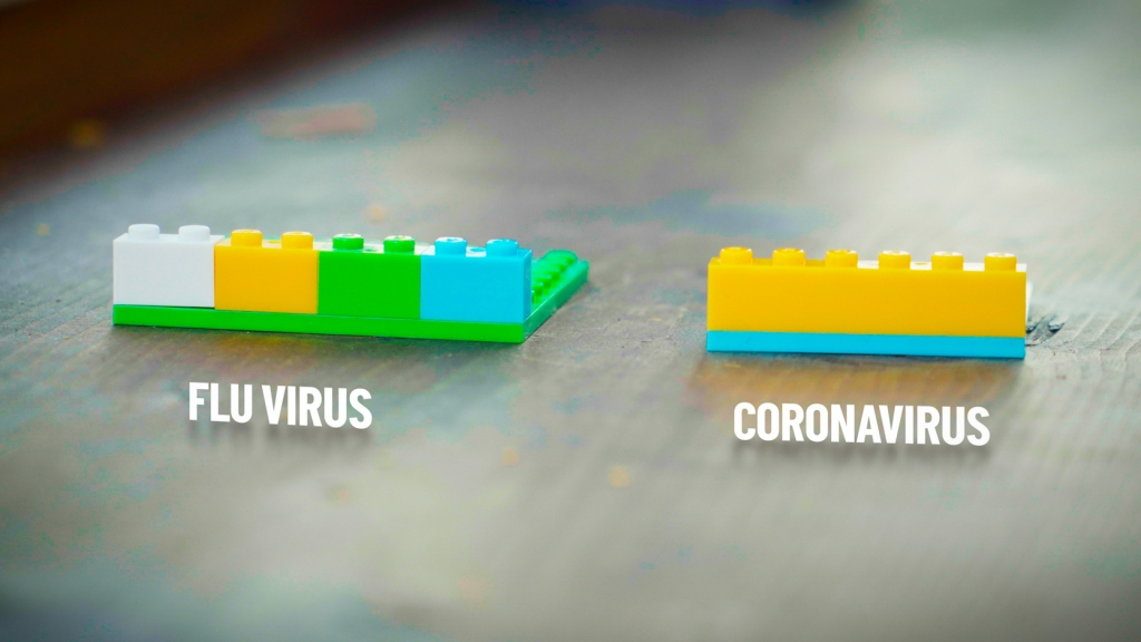 "several short lego blocks labeled ""flu virus."" one long lego block labeled ""coronavirus."""