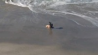 Drone Operator Rescues Woman From High Surf, Captures it On Video
