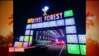 Insomniac's New Drive-Thru Rave for All Ages