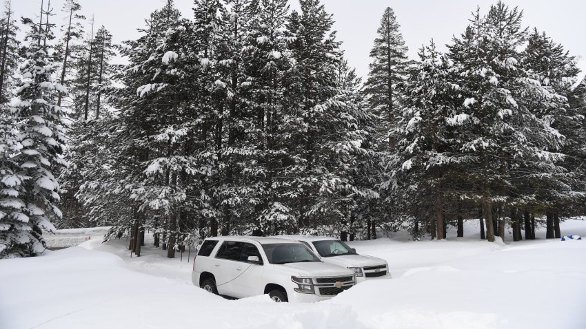 SUVs are parked in the snow.