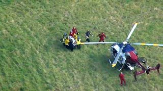 A tree worker is transported to a helicopter after being hit by a falling tree.