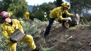 In this Nov. 20, 2019, file photo a fire prevention crew hauls away sections of a tree they cut down near Redwood Estates, Calif. California Gov. Gavin Newsom has vastly overstated wildfire prevention work done under his administration according to an investigation by Capital Public Radio published Wednesday, June, 23, 2021.