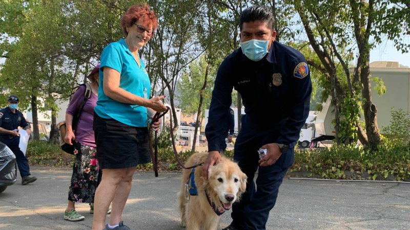 PHOTOS: Therapy Dogs Bring Joy to Firefighters at Caldor Fire Base Camp