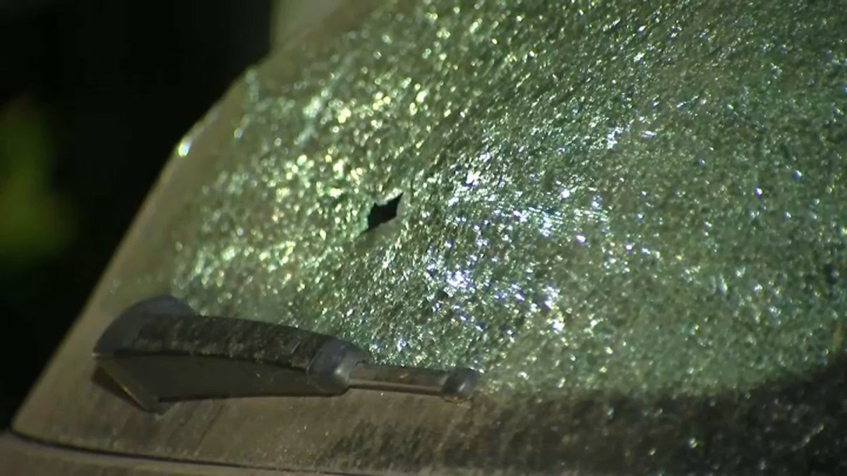 Menlo Park Police Arrest 2 on Suspicion of Vandalizing Cars With BB Guns