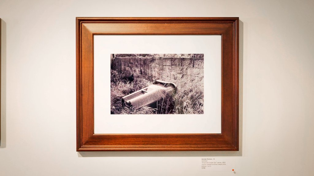 a framed photo on a wall depicts a garbage can lying on its side in a yard full of overgrown grass