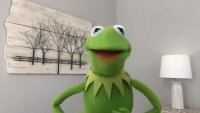 Kermit the Frog Wants Us to Protect the Earth From Climate Change