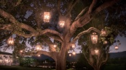 [WORTH THE TRIP] Ojai Illumination: A Tree-tastic Artwork
