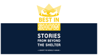 Best in Show – Stories from Beyond the Shelter