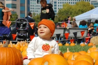Pumpkins in the Park 2017