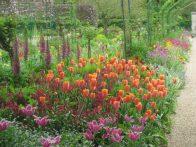Filoli Gardens April Programs