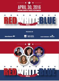 Red, White & Blue Ball