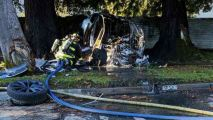 Fire Ignites After Tesla Crashes Into Tree in Fremont