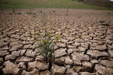 California Water Board Revises Mandatory Cutbacks