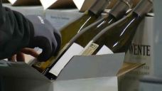 Trade Tariffs Costing Local Wine Industry