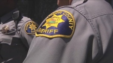 Sheriff's Office Conducts Homicide Investigation in Hayward
